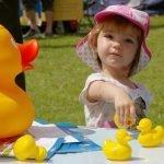 Choosing a duck-800